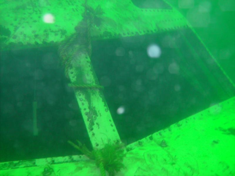 727 Cockpit at Mermet Springs