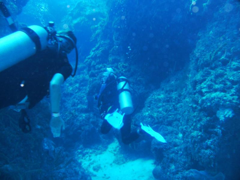 coral formations, Palancar bricks cozumel