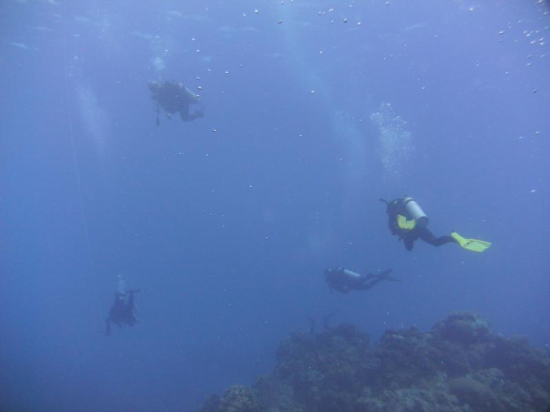 Home away from home (Cozumel drift diving closest thing to flying)