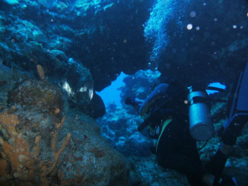 cool swim throughs, Palancar Bricks, Cozumel