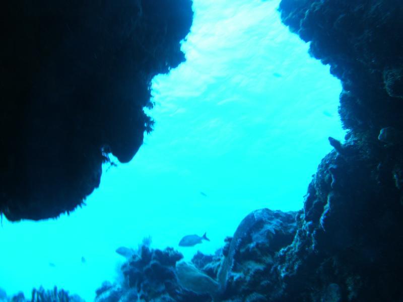 more swim throughs, Palancar, Cozumel