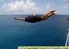 George Flys of top deck W Caicos