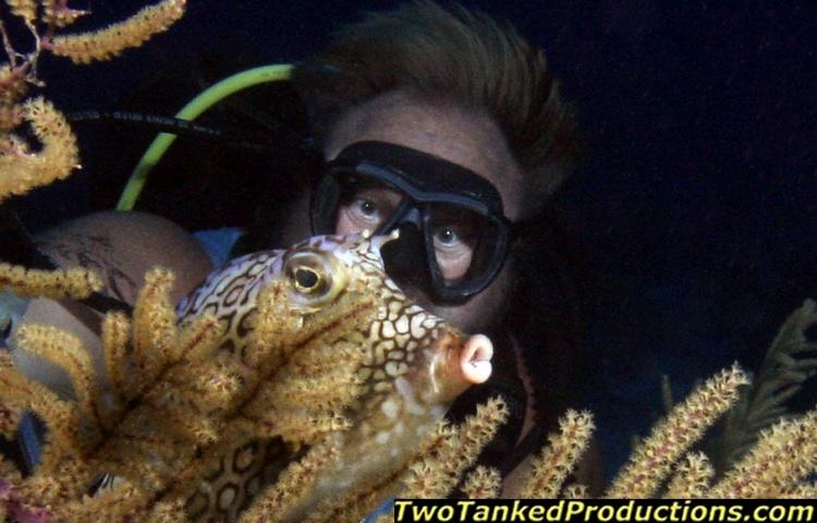 Tony & Trunkfish W Caicos T & C