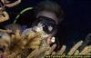 Tony & Trunkfish W Caicos T & C - PapaBear