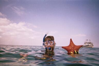 Steve (digicus) starfish in Abacos