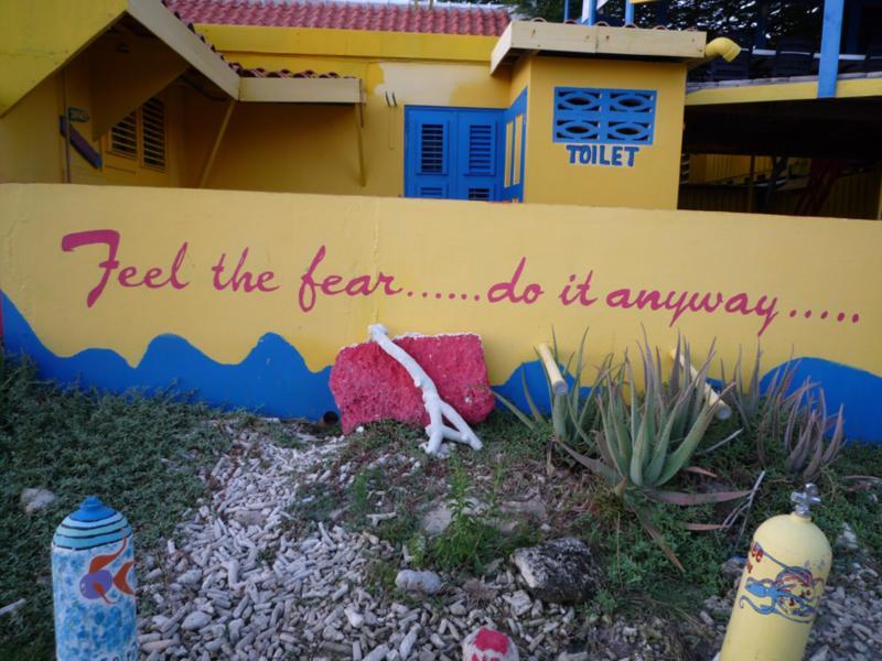 Bonaire Dive Friends