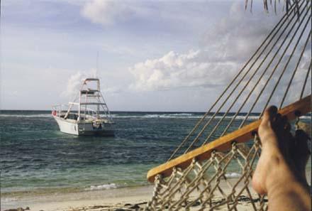 Life of Diver- Cayman Brac Reef Resort