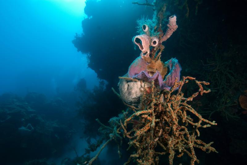 Outer Exuma Cays, Bahamas