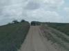 Road To Ponta