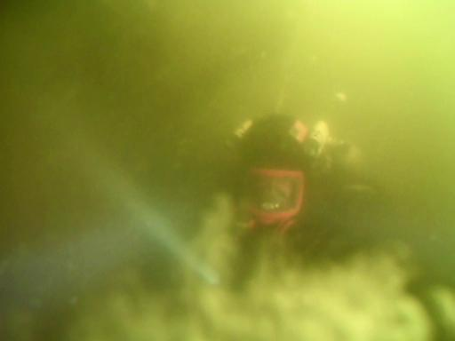 Security training dive, Charleston Sc, Cooper River