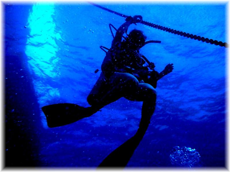 Steve Blackbeard's Bahamas