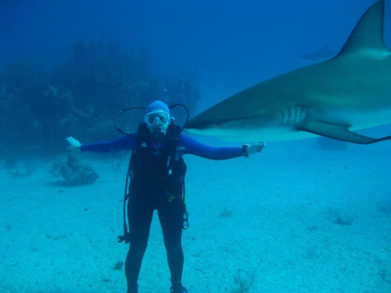 Gr Bahamas, Freeport, Shark
