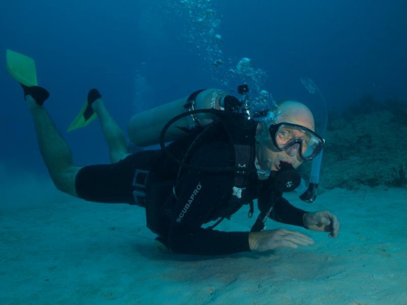 Eyeballing the photographer at Playa Del Carmen Jardines reef