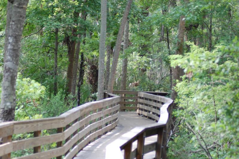 Blue Springs Florida - Boardwalk