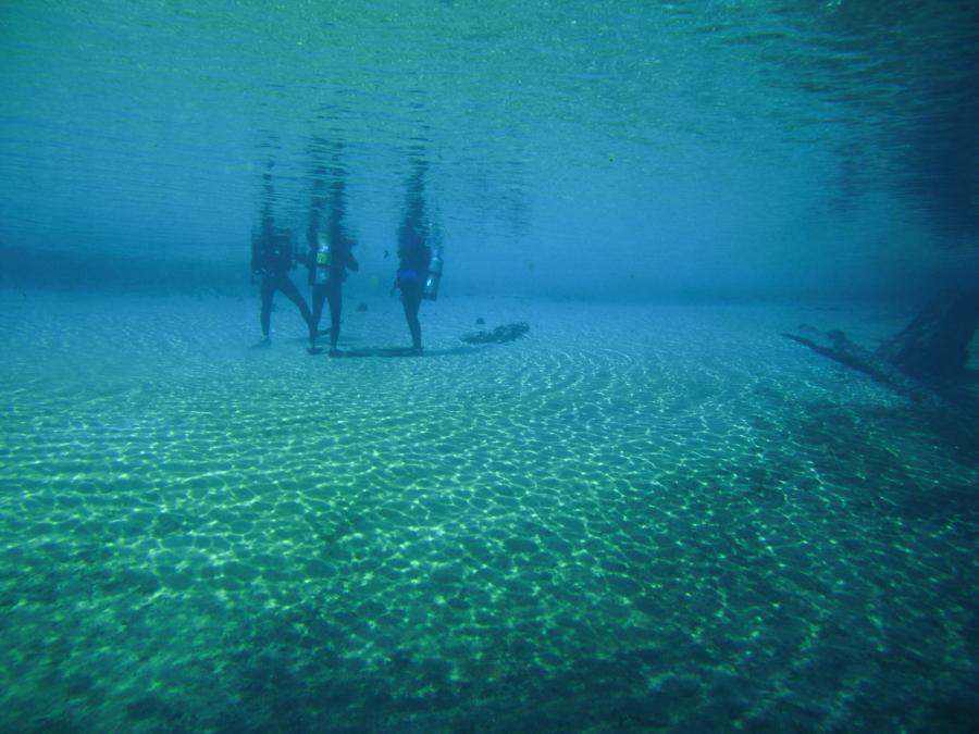 Morrison Springs Underwater