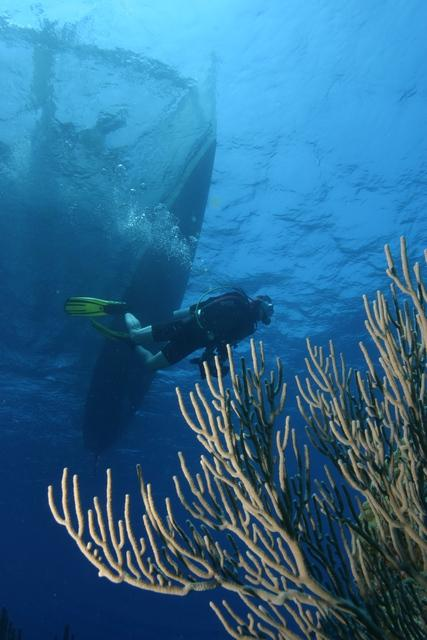 Honduras with Bestdivers.pl
