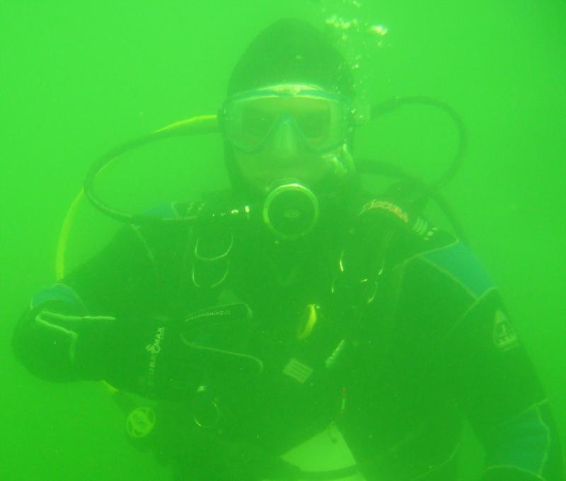 Diving Mermet Springs