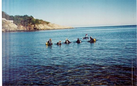 Cold Water Fun