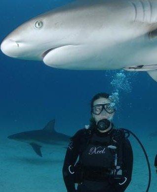 Bahama dive w/ Stuarts Cove