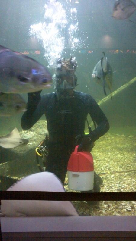 At work at the Atlantic City Aquarium