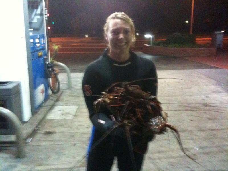 Lobsters in Laguna Beach