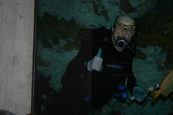 Me on Dive Team at National Aquarium in Baltimore