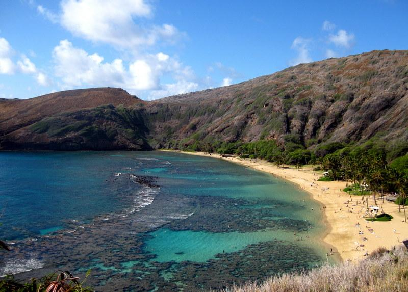 Birthday Dive @ Hanauma Bay