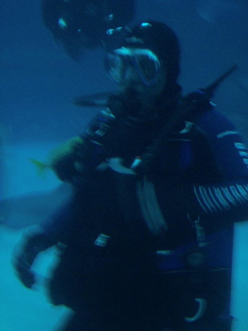 Ga. Aquarium 2-13-2011