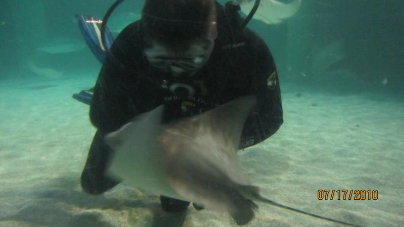 Me Diving at Baltimore national Aquarium
