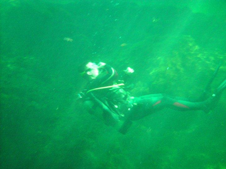 Troy Springs Dive