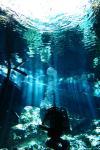 exiting a cave dive
