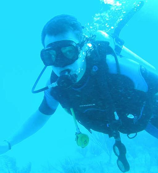 Diving in Sydney