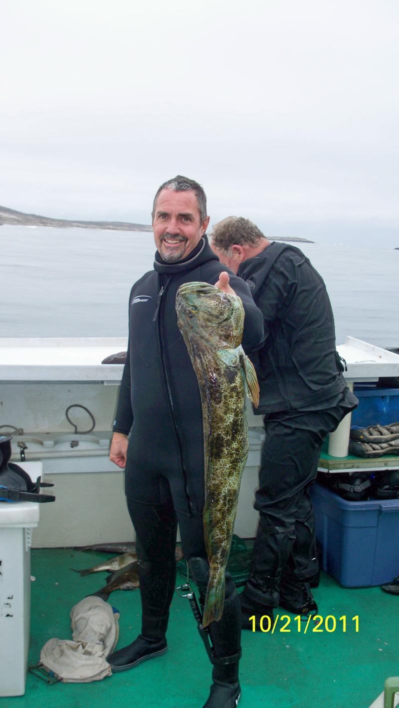 Channel islands 2011 dive trip