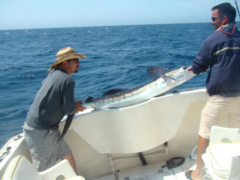 My Striped Marlin in Cabo