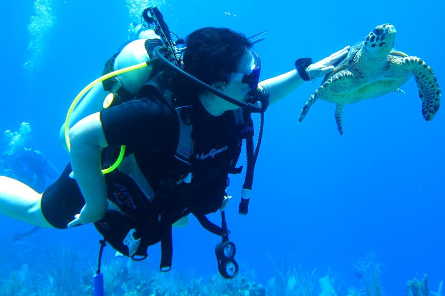 Jana swimming with the turtles.