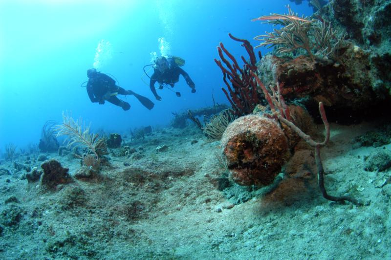 Wreck of Rhone cannon