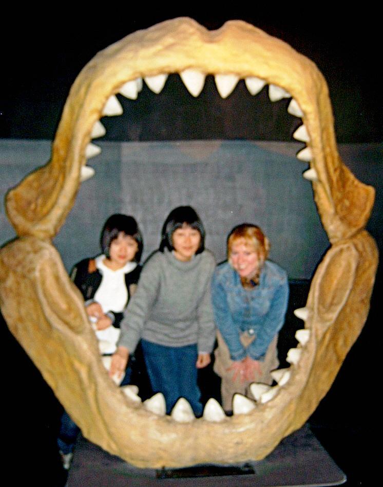 Pusan Aquarium with students