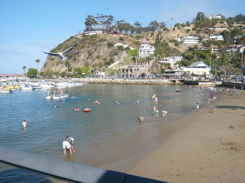 Avalon @ Catalina Island