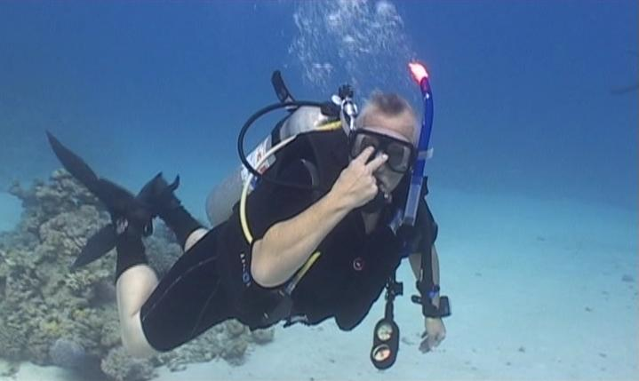 diving in sharm red sea