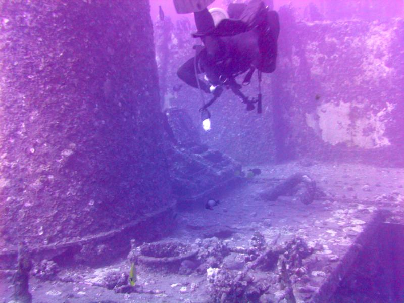 Taken during a dive to the Sea Tiger, Oahu Hawaii
