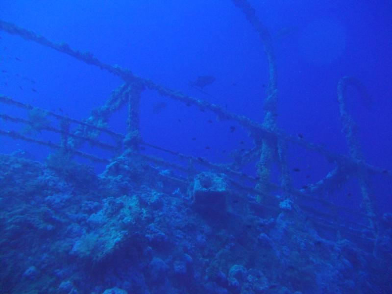 Numidia wreck in the red sea 2011
