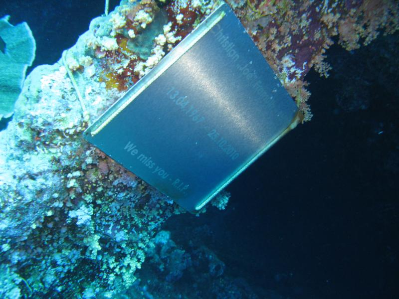 i dont know how he died , but RIP . numidea - red sea 2011