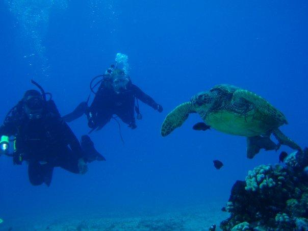 Jamie and Tim Hernandez diving with a local on the Big Island