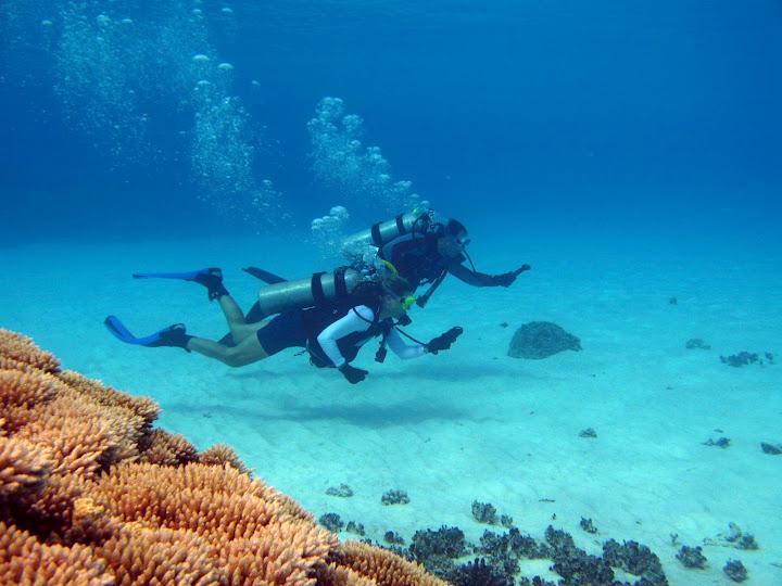 Nav Dive in Bigej Lagoon