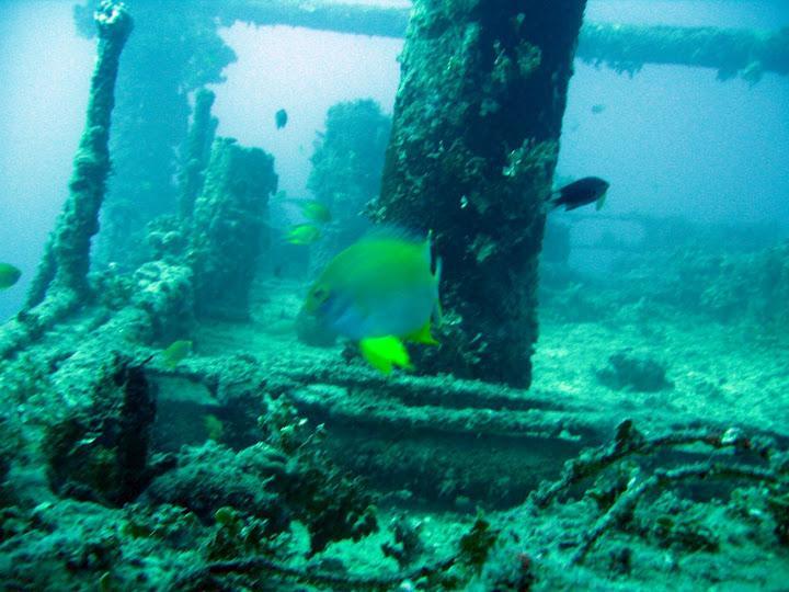 Deck of Akibasan Maru at 110'