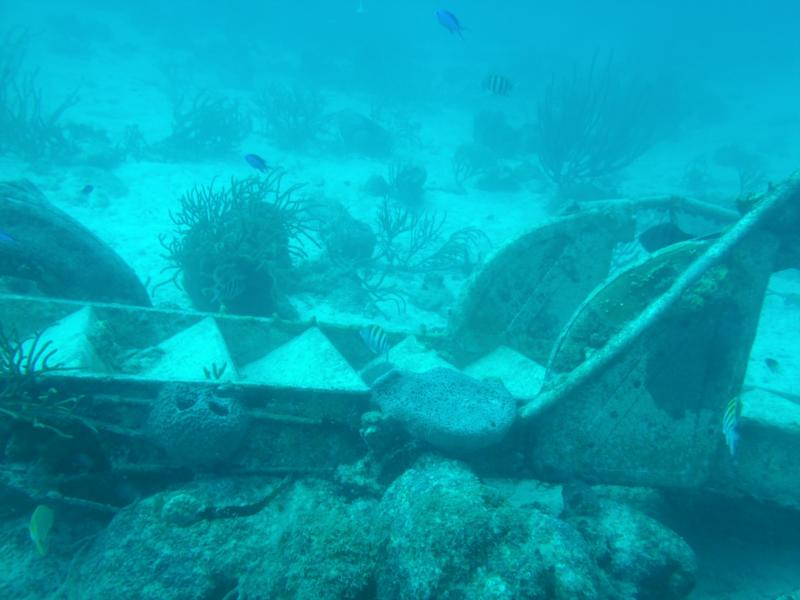 Part of a Ship Wreck in Aruba