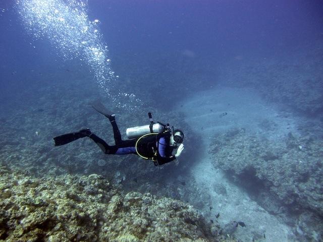 Diving Japan