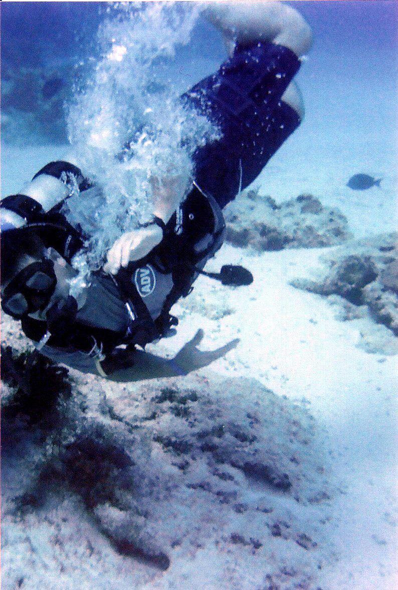 Me diving in Cozumel Feb 2011