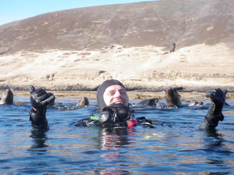 Santa Brbara Islad - Sea Lions