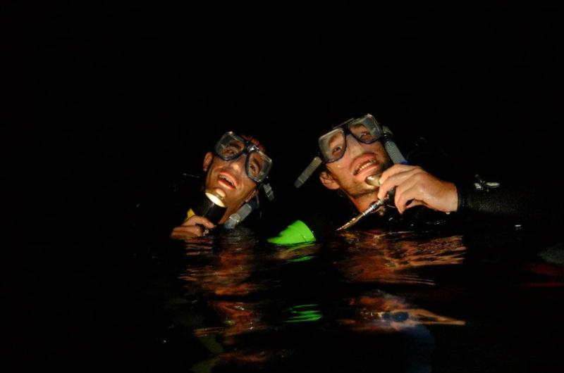 Night dive monsters